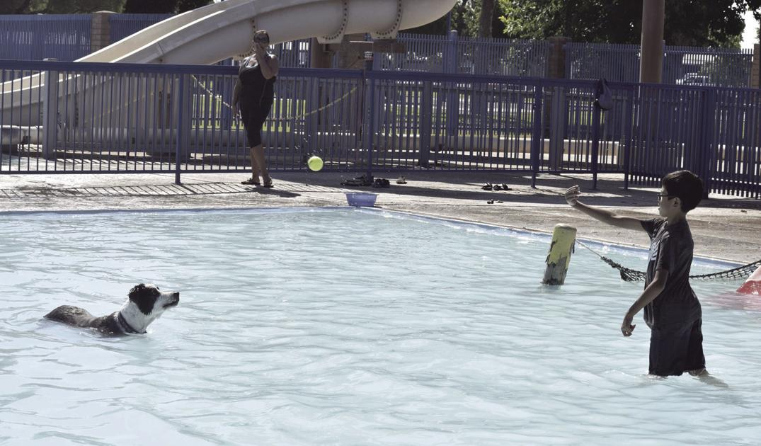 City hosts Woof Splash Expo at Kennedy Pool